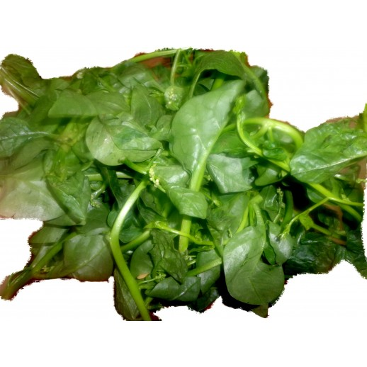 Spinach (Portion)